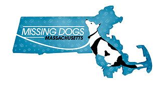 Missing Dogs Massachusetts website
