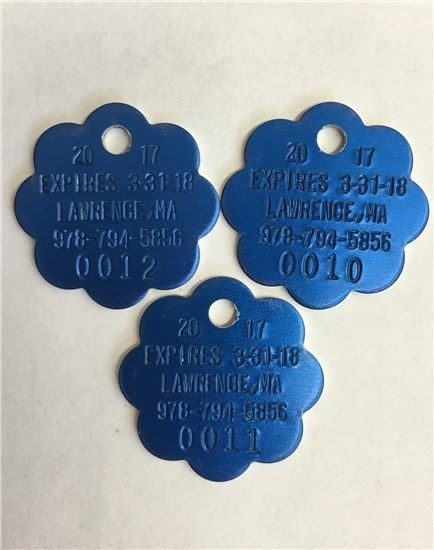 Three blue rabies tags